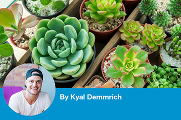 Kyal's DIY: build your own tabletop planter